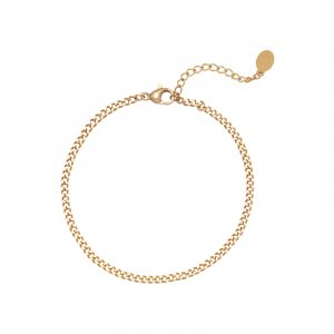 armband stainless steel tiny plain chains goud